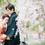 桜と新郎新婦